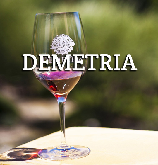 Demetria Winery Santa Barbara