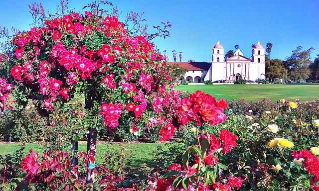 santa-barbara-rose-garden