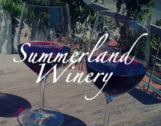 Summerland Winery Tasting Room