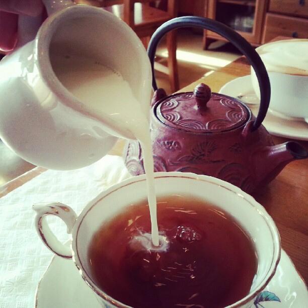 savoy-cafe-santa-barbara-tea