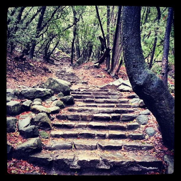 santa-barbara-nojoqui-falls-stairs