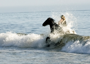 Santa Barbara Beach Horseback Riding